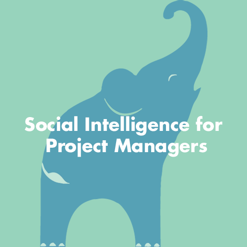 Social Intelligence for Project Managers - Project Motivator
